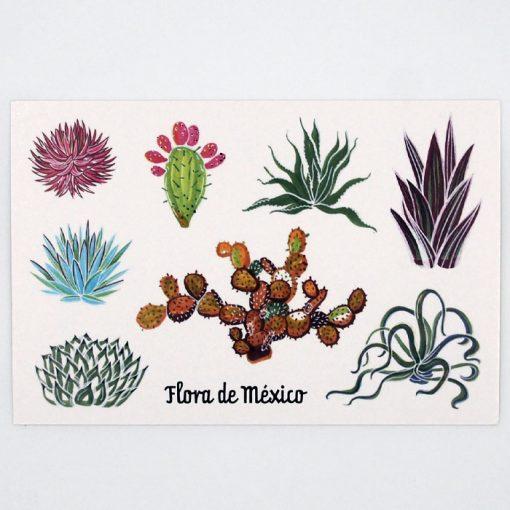Flora - Mexico / pohľadnica