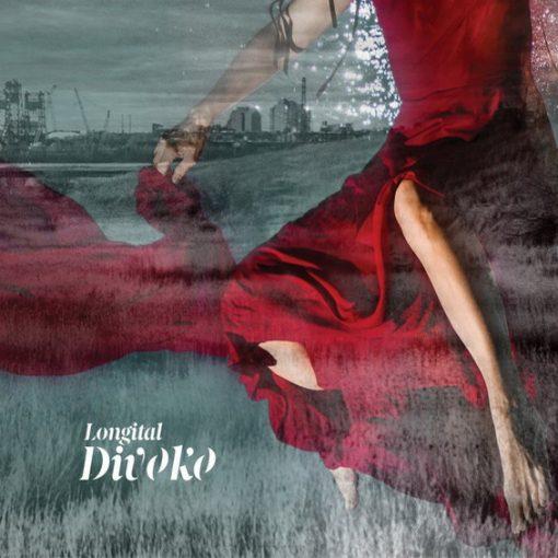 Longital - Divoko / vinyl