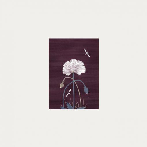 Makový kvet - plagátik / obrázok A4