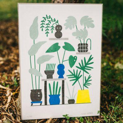 Grafika Izbové rastliny 44 x 31 cm