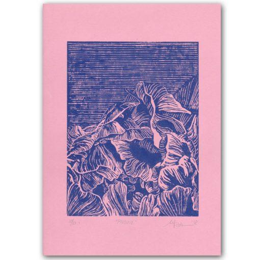 Pivoine Pink - Martina Rötlingová linorytová grafika 43 x 30cm