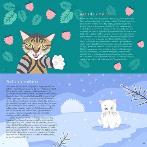 Mica - Dobrodružstvá mačiek z Liptovského Hrádku / kniha pre deti