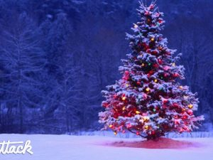Dodanie objednávok a otváracie hodiny počas vianočných sviatkov 2018
