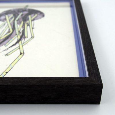 Medúza / Plody mora - Pangea Boards / grafika v ráme