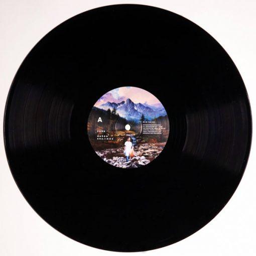 Našou krajinou LP 2018 - Para / vinyl