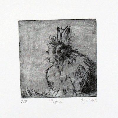 Zajac / hĺbkotlačová grafika