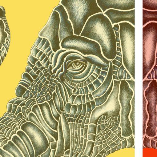 Elephants love - K. Branišová - Abstraktné stavy / grafika