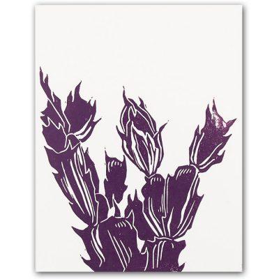 Cactus, malá - Martina Rötlingová / pohľadnica