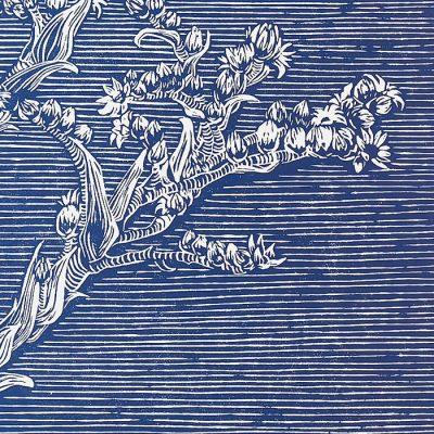 Pink sun EA - Martina Rötlingová / linorytová grafika 30 x 42cm