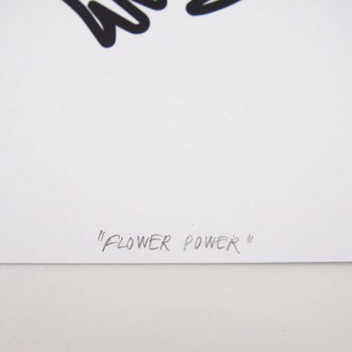 Flower Power - Dorota Hošovská / grafika