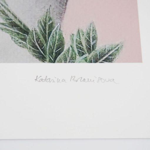 Desire - Katarína Branišová, A3 / grafika