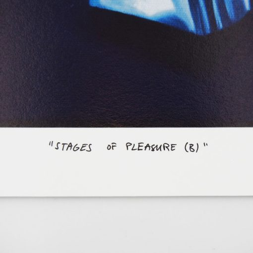 Stages of Pleasure - Martina Rötlingová / giclée grafika