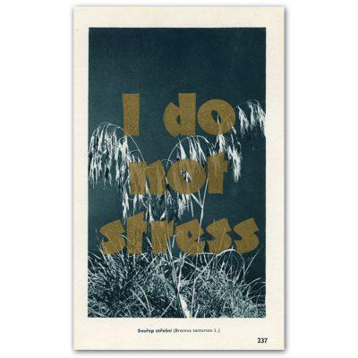 I do not stress - Pressink, Sveřep střešní / letterpressová grafika