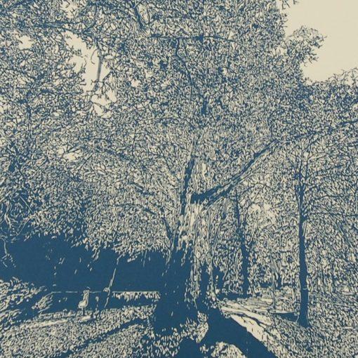 Bratislava Zámocká záhrada, béžová - Tlatchene, 50 x 40 cm / linorytová grafika