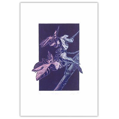 Fig branch II. - Martina Rötlingová / linorytová grafika 36 x 25 cm