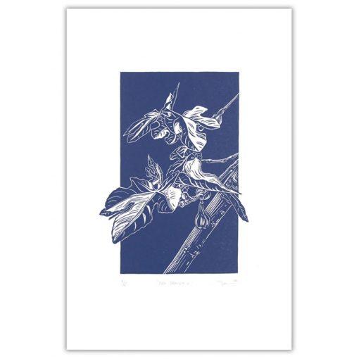 Fig branch III., modrá - Martina Rötlingová / linorytová grafika 36 x 25 cm