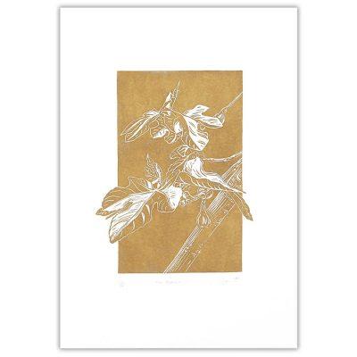 Fig branch III., zlatá - Martina Rötlingová / linorytová grafika 36 x 25 cm