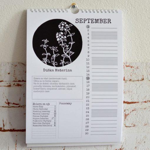 Nástenný kalendár byliniek 2022 - Múdry blázon / kalendár