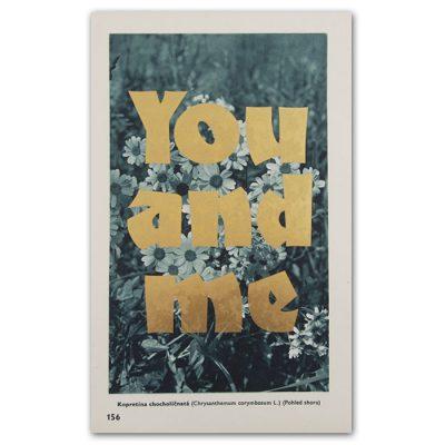 You and me - Pressink, Kopretina chocholičnatá / letterpressová grafika